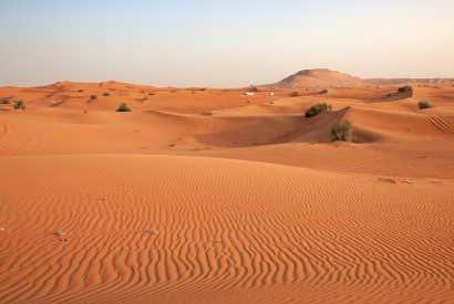 Conociendo el Desierto de Dubai