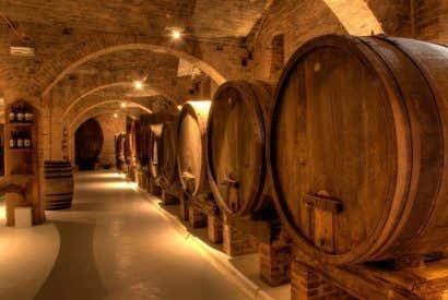 Œnotourisme : les meilleures visites pour les amateurs de vin