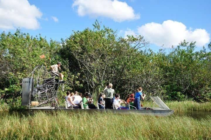 Hovercraft through the Everglades