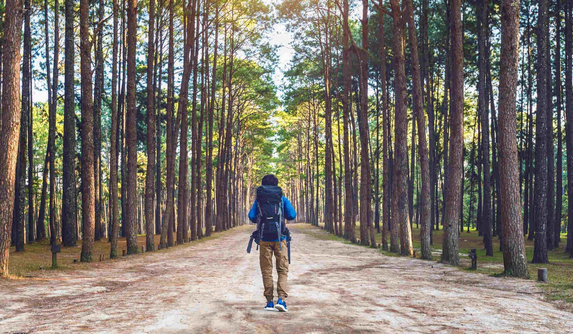 7 conseils pour un tourisme durable