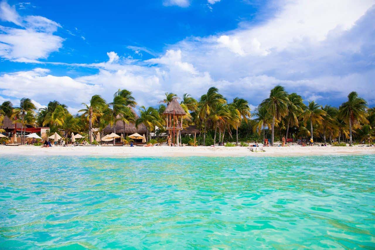 Vista da Isla Mujeres, coberta de coqueiros e areia branca, com um mar com águas cristalinas