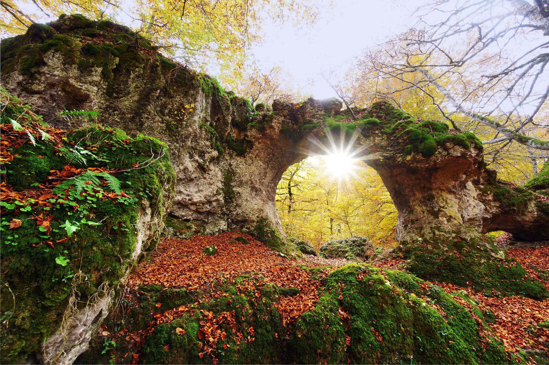 10 bosques para disfrutar del otoño en España