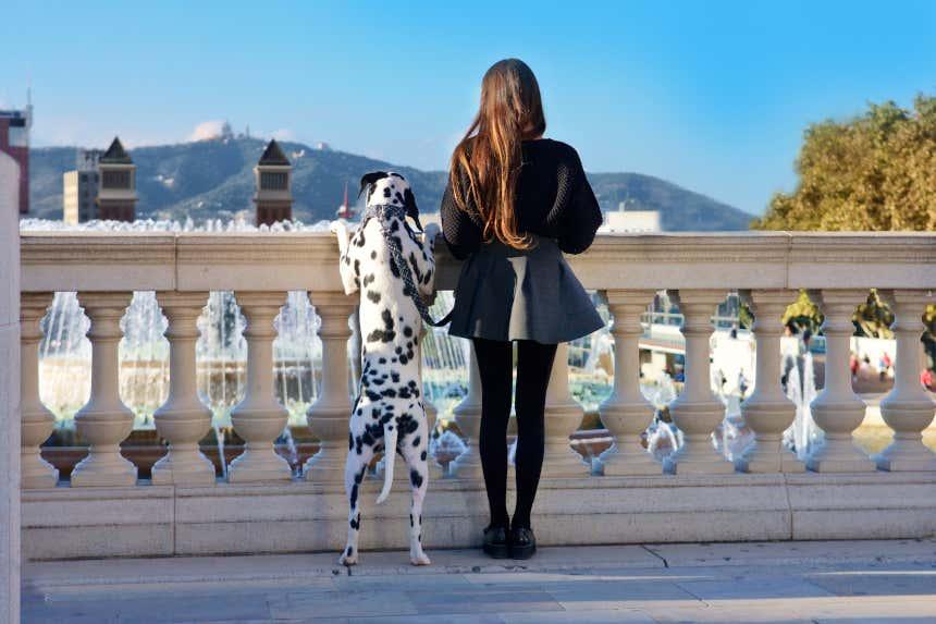 Chica con su perro contemplando la Plaza de España en Barcelona desde un mirador.