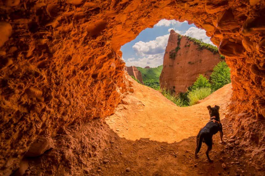 Perro en la entrada de una cueva en Las Médulas, El Bierzo, provincia de León.