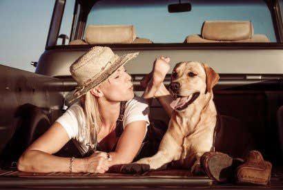 Los 10 mejores destinos para viajar con tu mascota por España