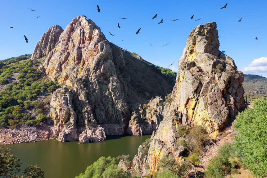 Mirador del Salto del Gitano y río Tajo sobrevolado por buitres en el Parque Nacional de Monfragüe, Cáceres.