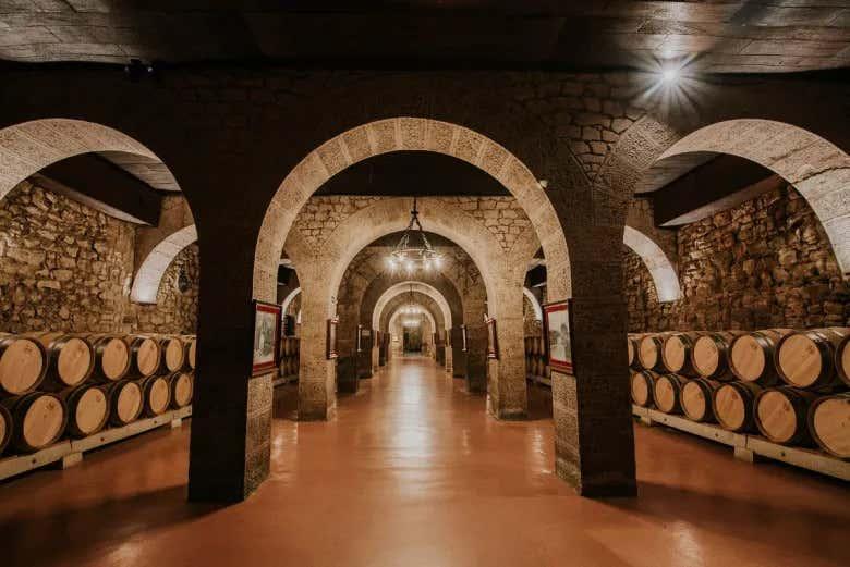 Interior de las bodegas Franco-españolas y barriles de vino.