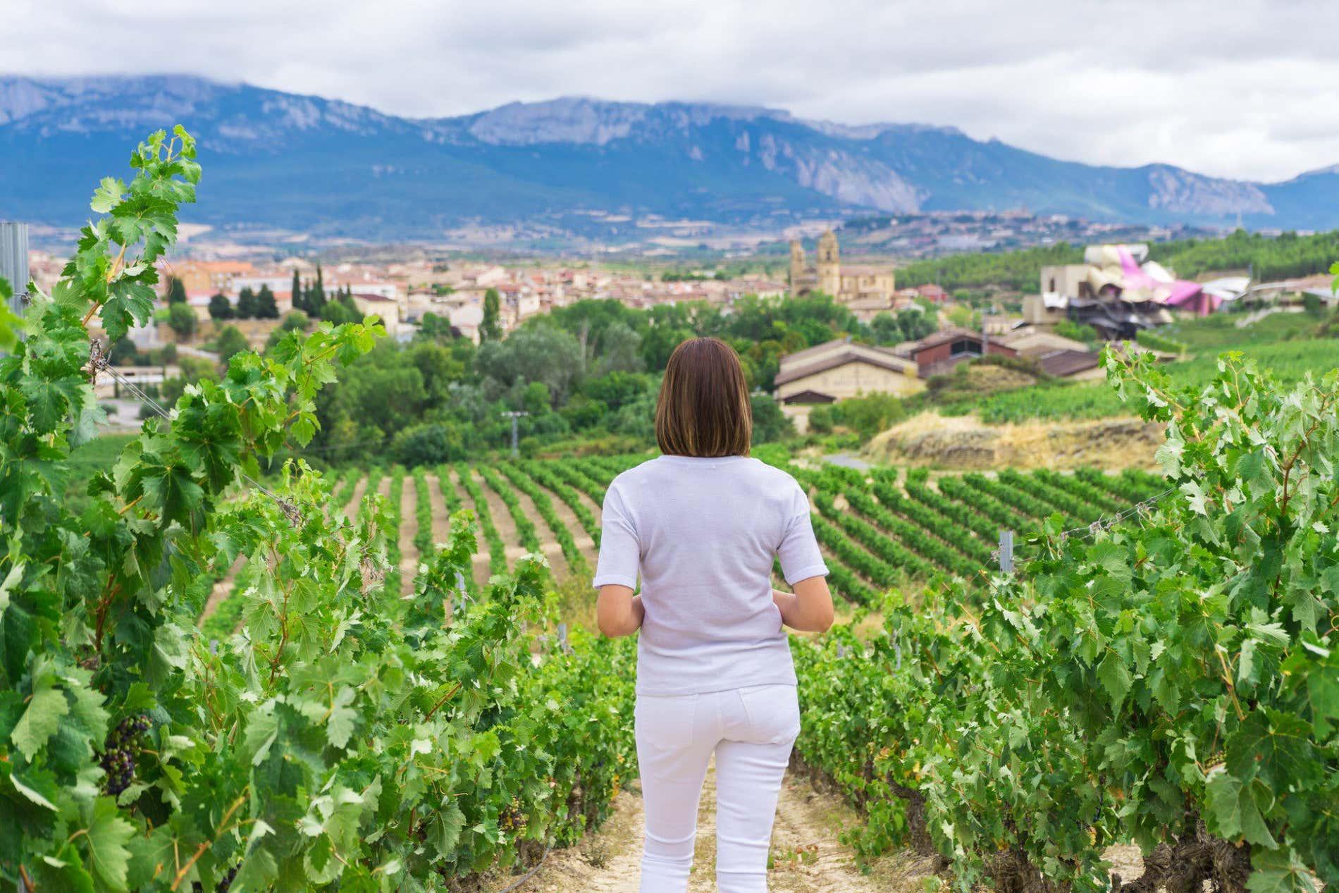 Qué bodegas visitar en La Rioja