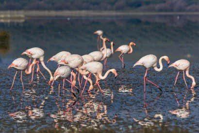 Los 10 lagos más bonitos de España