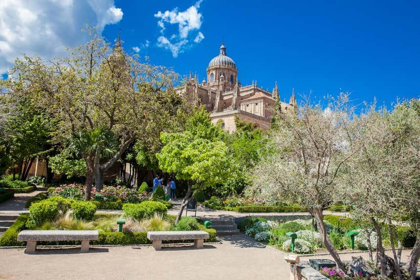 Vista de la catedral de Salamanca desde el Huerto de Calixto y Melibea.