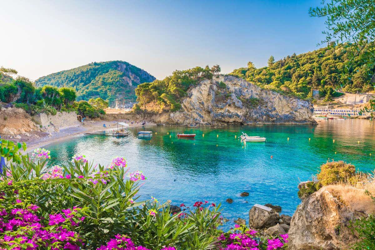 Vistas de uma das baías de Corfu rodeada de vegetação verde