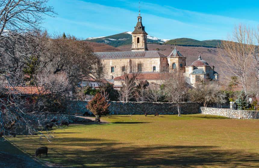 Monasterio de Santa María de El Paular en Rascafría tras una pequeña muralla de piedra y varios árboles sin hojas.