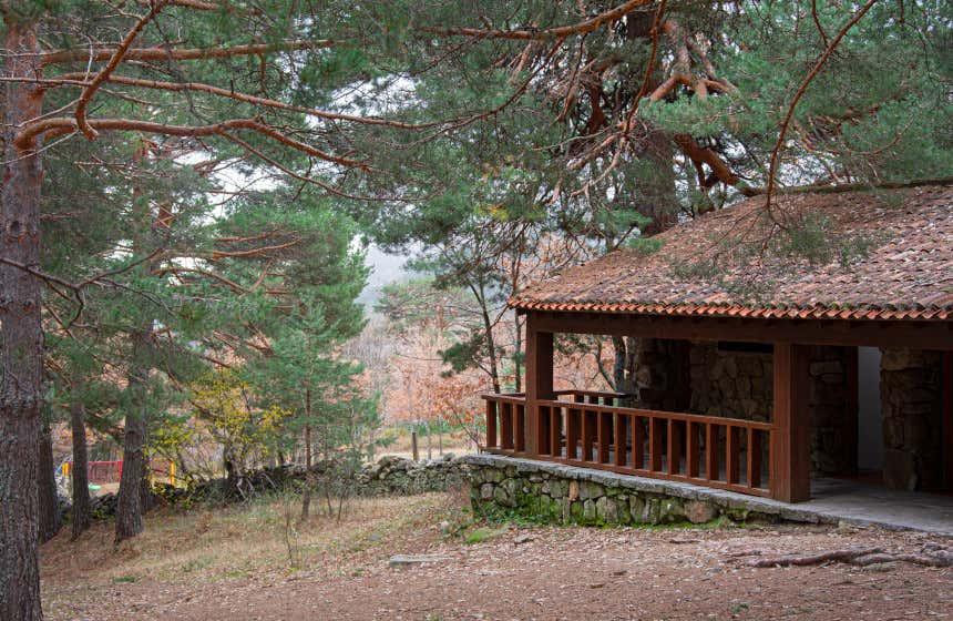 Una casa de madera y teja entre altos árboles en el valle de la Fuenfría en Cercedilla.