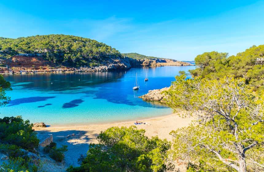 Enclave aislado en Ibiza: Cala Salada, considerada una de las mejores playas de las Islas Baleares.
