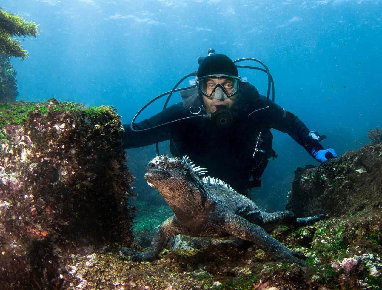 Buceando con una iguana marina en las islas Galápagos