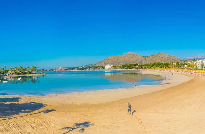Playa de Alcudia, una extensión de 3,5 kilómetros de fina arena dorada.