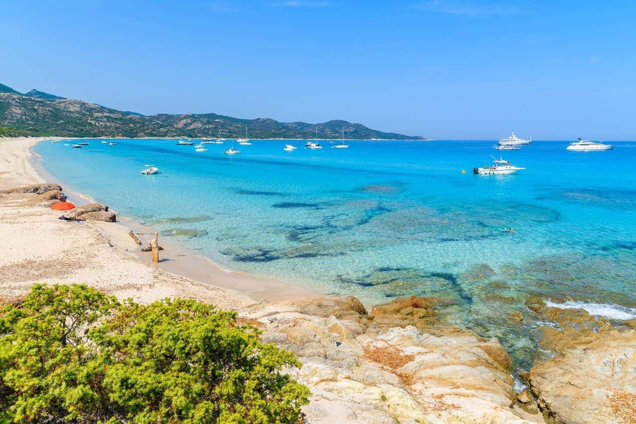 Plage de Saleccia en Corse, l'une des plus belles plages françaises.