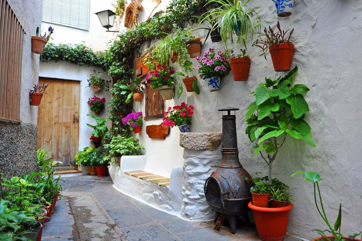 Macetas repletas de flores en una estrecha calle de paredes blancas que conducen a una casa en el barrio judío de Lanjarón.