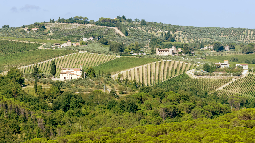 Viñedos de Val di Pesa, en Toscana