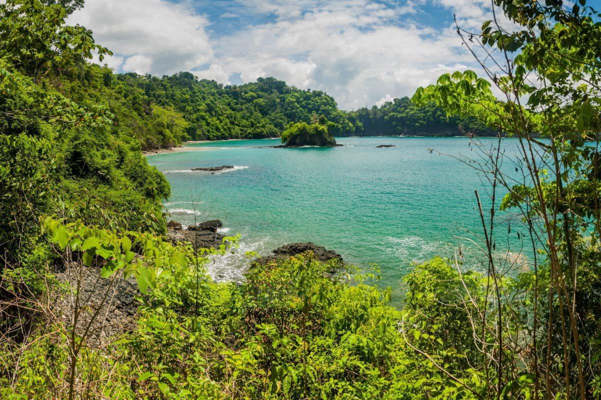 Selva tropical del Parque Nacional Manuel Antonio.