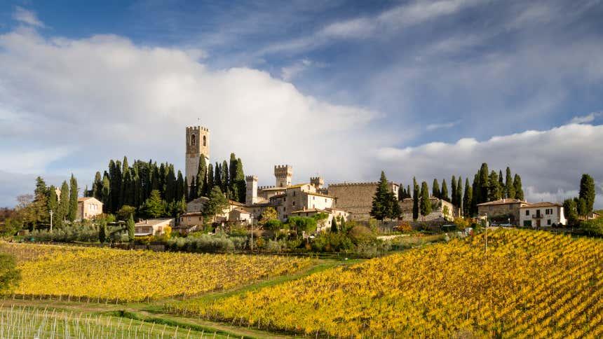 Vista de la abadía de Passignano y sus viñedos.