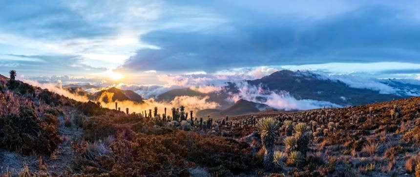 Nevado del Tolima y paisajes del Parque de los Nevados.