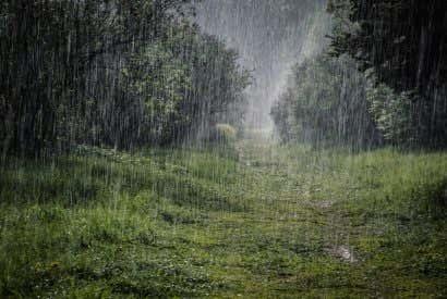 Los lugares más húmedos del mundo