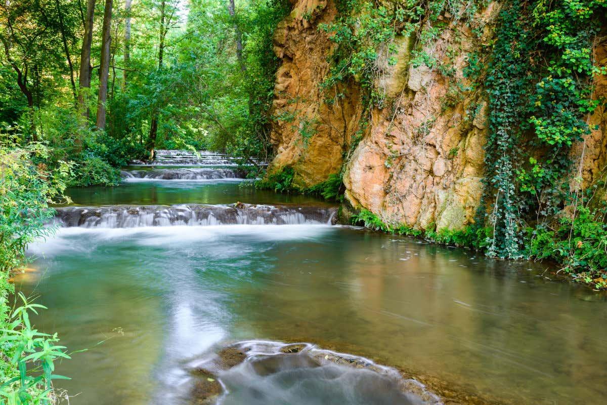 Aguas cristalinas descendiendo en un arroyo rodeado de vegetación en el parque natural del Monasterio de Piedra.