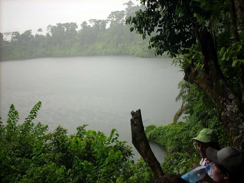 Pantano en Debundscha, Camerún