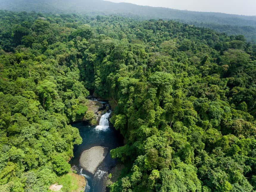 Cascada en un bosque de Guinea Ecuatorial
