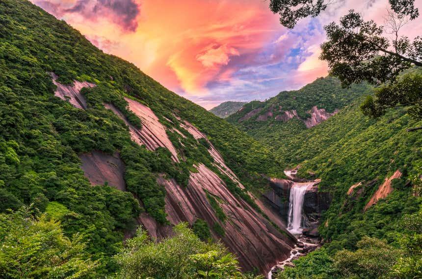 Cascada en Yakushima, Japón