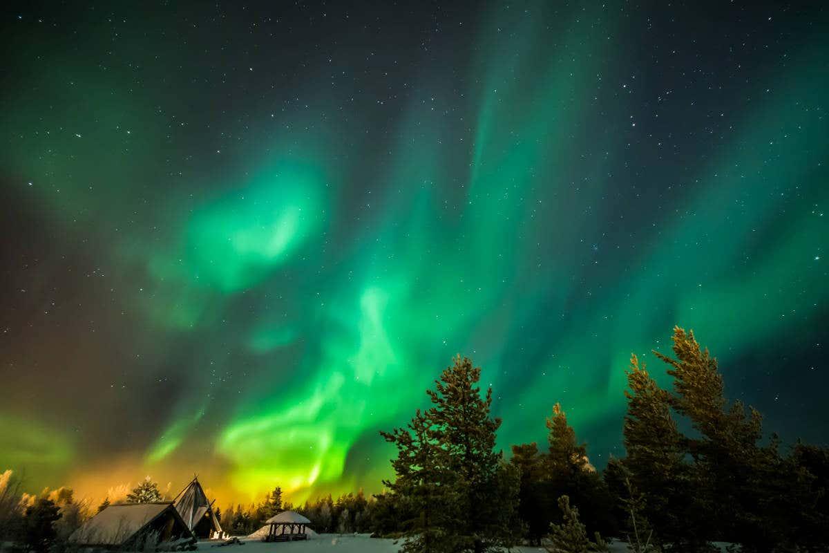 Aurora boreal azul y verde en los bosques de Rovaniemi