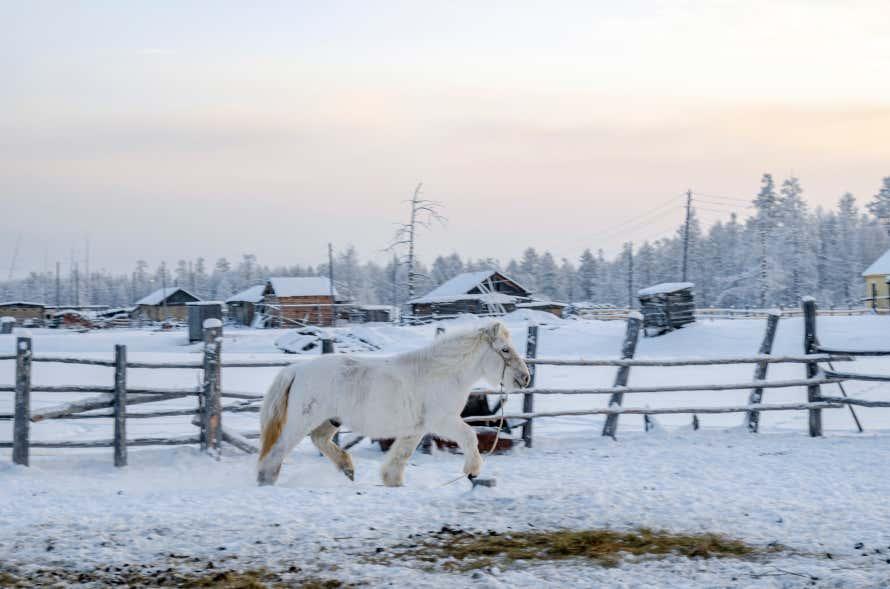 Oimiakón, en Siberia.